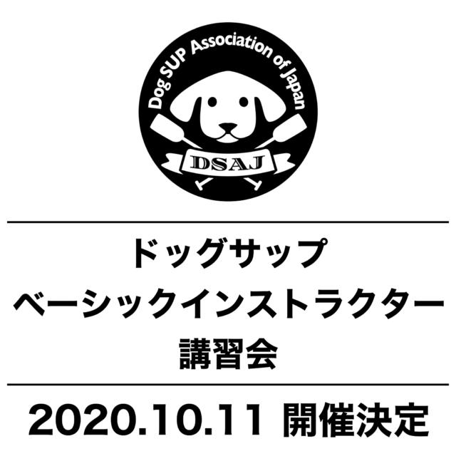 ドッグサップベーシックインストラクター講習会 10/11(日)開催決定‼️
